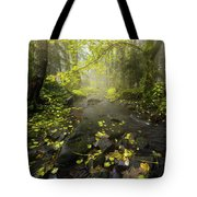 Beside The Stream Tote Bag