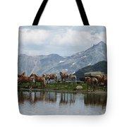 Best Creatures Tote Bag