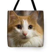 Best Friend Tote Bag