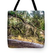 Bethany Cemetery Oaks And Tidal Creek Tote Bag