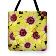 Better Is Beautiful Tote Bag