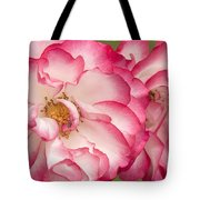Betty Boop Rose Portrait Tote Bag