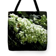 Between Darkness And Light 2017 003 Tote Bag