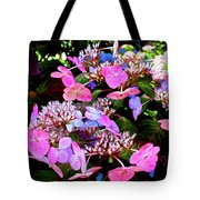 Between Darkness And Light 2017 004 Tote Bag