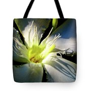 Between Darkness And Light 2017 005 Tote Bag