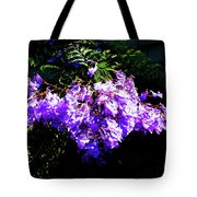 Between The Darkness And The Light 2017 002 Tote Bag