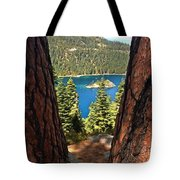 Between The Pines Tote Bag
