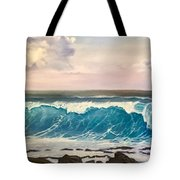 Between The Turtle And The Shark Tote Bag