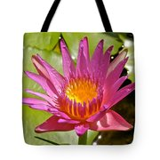 Beyond Beautiful Water Lily 3 Tote Bag