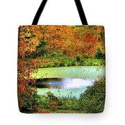Beyond The Birch Pathway Tote Bag