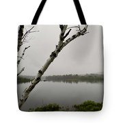 Beyond The Birches Tote Bag
