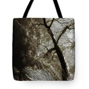 Beyond The Eyes Tote Bag