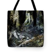 Beyond The Forest Edge Tote Bag