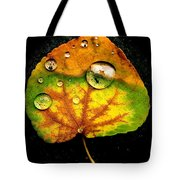 The Living Universe Tote Bag