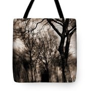 Beyond Twilight Tote Bag
