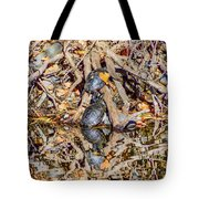 Bidwell Turtles In Fall Tote Bag