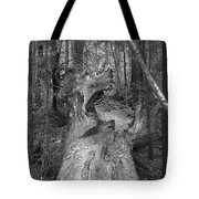 Big Basin 2 Tote Bag
