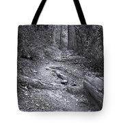 Big Basin Redwoods Sp 1 Tote Bag