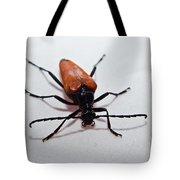 Big Beetle Tote Bag