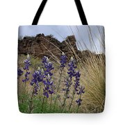 Big Bend Bluebonnets Tote Bag