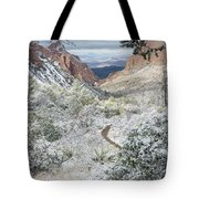 Big Bend Window With Snow Tote Bag