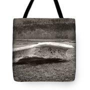 Big Berg Tote Bag