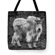 Big Billy Tote Bag by Bitter Buffalo Photography