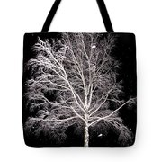 Big Birch Tote Bag