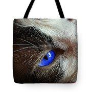 Big Blue Eyes Cat Tote Bag