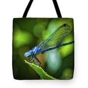 Big Blue Eyes Damselfly  Tote Bag