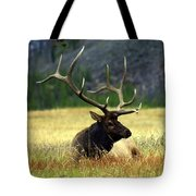 Big Bull 2 Tote Bag