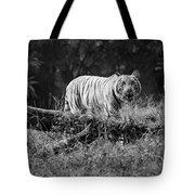 Big Cat In The Woods Tote Bag
