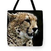 Big Cats 101 Tote Bag