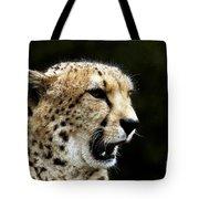 Big Cats 102 Tote Bag