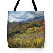 Big Cottonwood Canyon Fall Colors Tote Bag