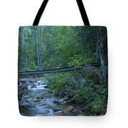 Big Creek Bridge Tote Bag
