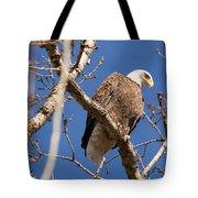Big Eagle Tote Bag