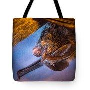 Big Eared Bat At Sunrise Tote Bag