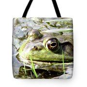 Big Eyed Frog In A Marsh Tote Bag