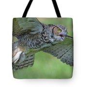 Big Eyes... Tote Bag