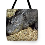 Big Gator Tote Bag