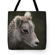 Big Horn Lamb Tote Bag