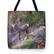 Big Horned Ram Tote Bag