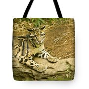 Big Kitty Cat Tote Bag