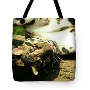 Big Kitty Fun Tote Bag
