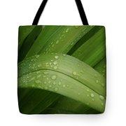 Big Lily Tote Bag