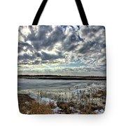 Big Marsh Spring Thaw 2 Tote Bag