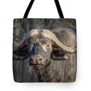 Big Old Bull Tote Bag