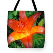 Big Orange Tote Bag