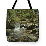 Big Pup Falls 2 Tote Bag
